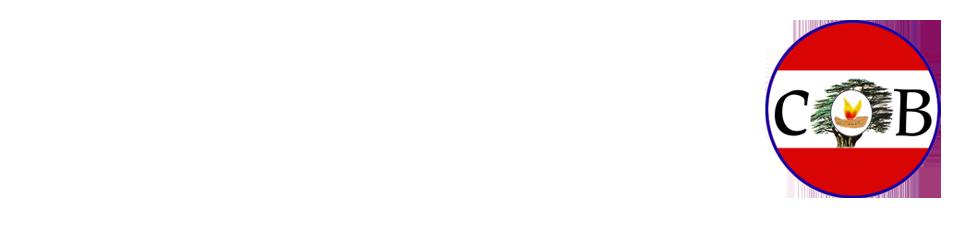 الكلية الشرقية زحلة